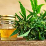 CBD benefits: Is CBD a biohack?